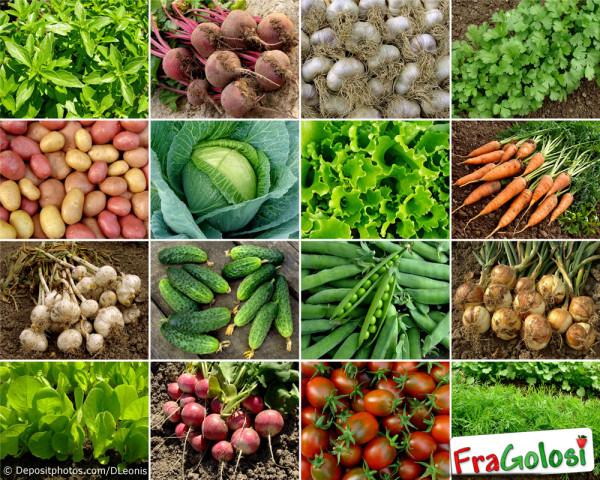 Tabella Calorie Ortaggi e Verdure