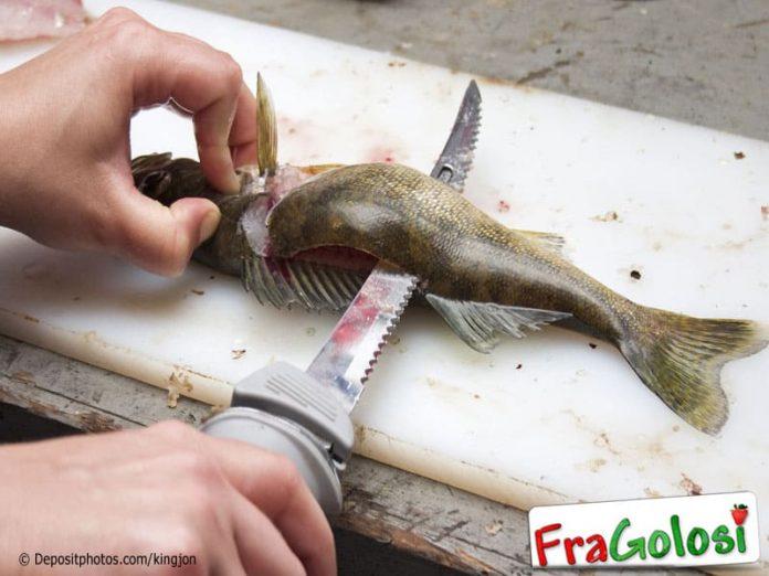 Per squamare il pesce con facilità
