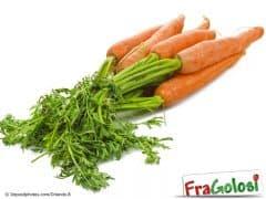 Come utilizzare il ciuffo delle carote