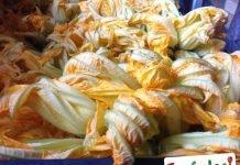 I fiori di zucchina che si mangiano