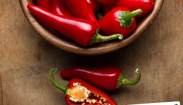 Come conservare i peperoncini piccanti durante tutto il periodo invernale