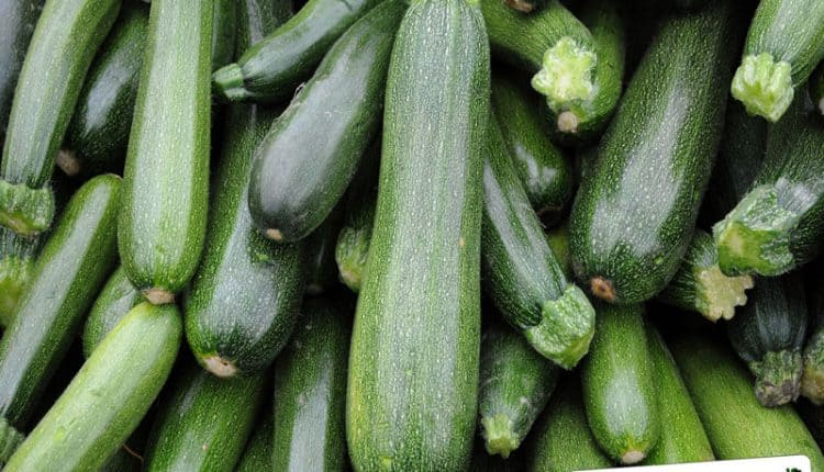 Come congelare le zucchine