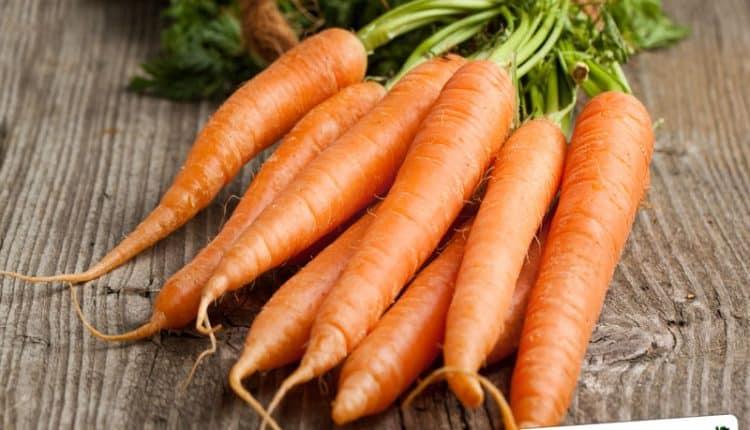 Come congelare le carote