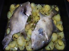 Pesce Balestra al Forno con Patate