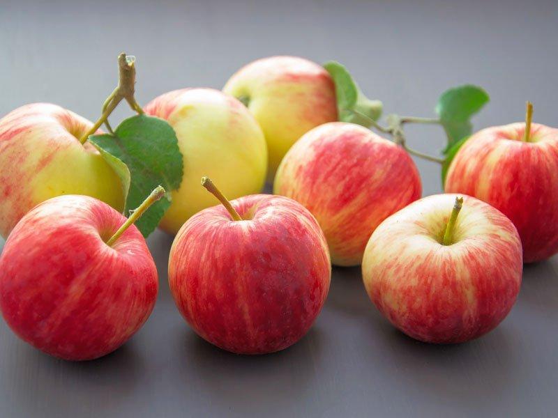 Ricette Frutta e Frutta Secca